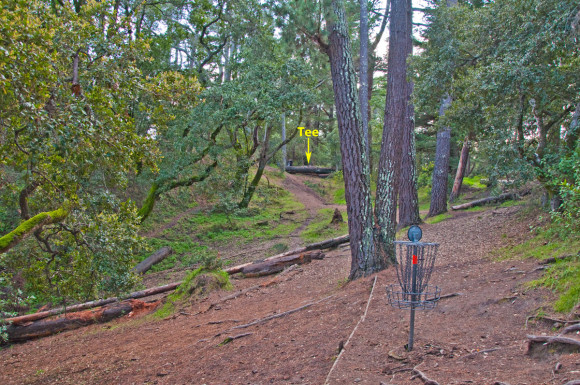 Hole 17, 'The Gravity Hole', at DeLaveaga. Note how the hole plays downhill as well as sloping right-to-left (looking back toward the tee). (Photo: John Hernlund)